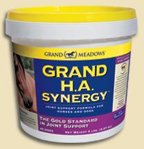 Grand H.A. Synergy, 25lbs