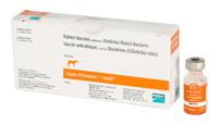 Potomavac + Imrab - Merial - Single dose