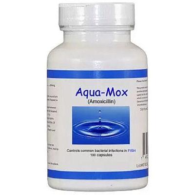 Aqua Mox Amoxicillin 250 mg - 100 capsules