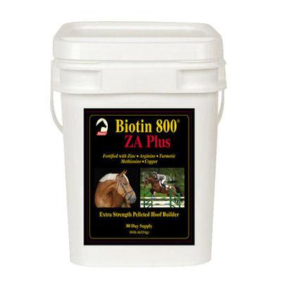 Biotin 800 Z A Plus -10 lbs