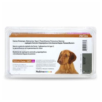 Nobivac: Canine 1-DAPPv+ CV