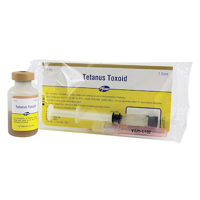 Tetanus Toxoid - Zoetis - single dose
